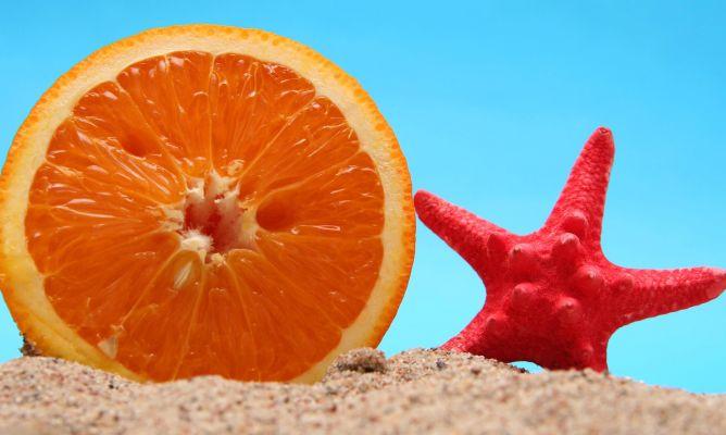 Narnaja y estrella de mar sobre la arena de la playa