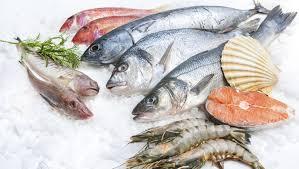 Diferentes pescados azules y blancos sobre el hielo